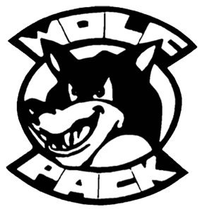Fighting Wolf Martial Arts Online